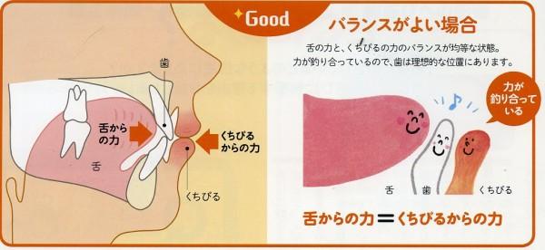 舌  図296